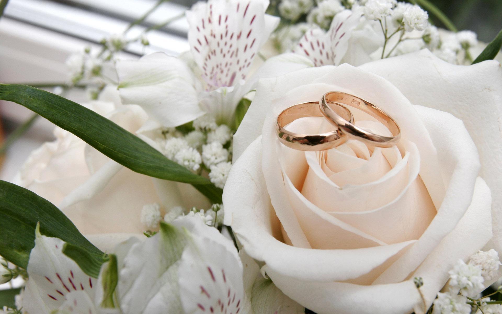 متن زیبای کارت هدیه متن های قشنگ کارت عروسی
