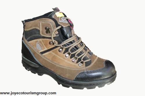 کفش کوهنوردی آسیا