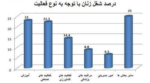 ٪60 فعالیت زنان شاغل ایرانی در بخش خصوصی و درآمد آنان 2.5 برابر کمتر از مردان