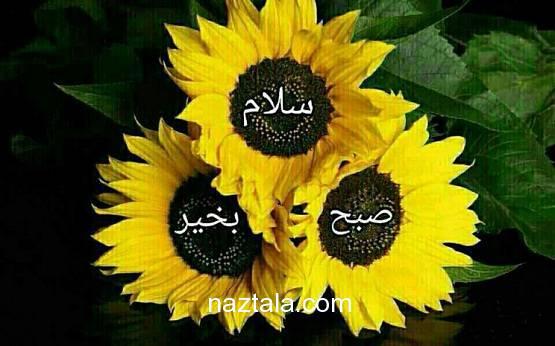 عکس نوشته های صبح بخیر + شعر زیبا درباره سلام صبح بخیر (7)