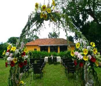 عکس صندلی عروس داماد