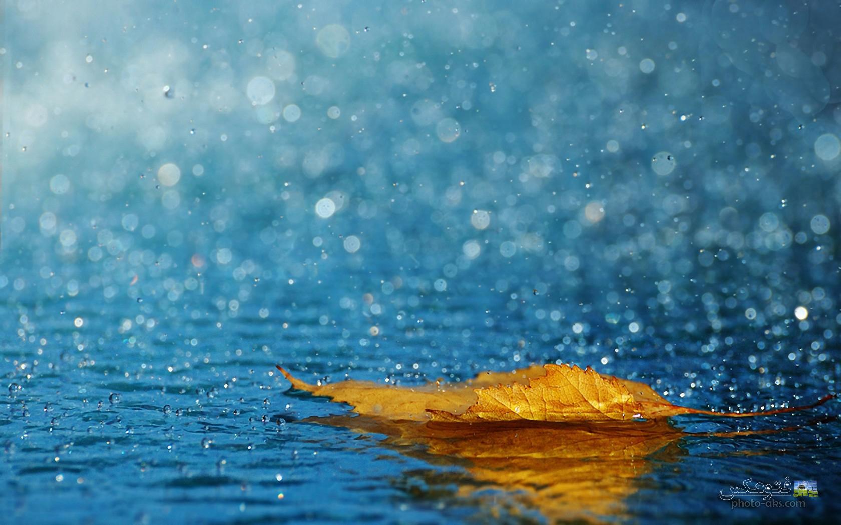 مقاله ای کامل در مورد باران اسیدی