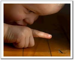 Ant-Child.jpg
