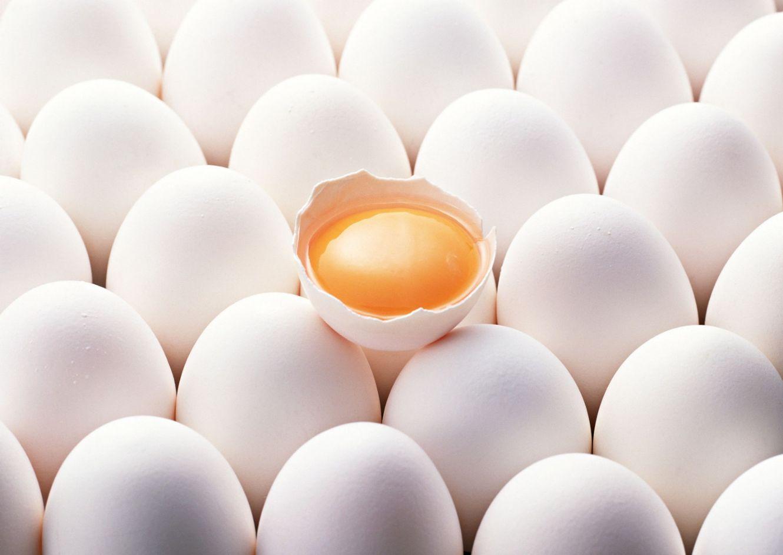 اخباراقتصادی ,خبرهای   اقتصادی ,نرخ تخم مرغ